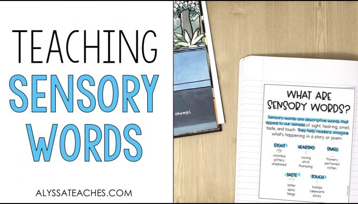 Tips for teaching sensory words